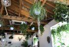 川越の開放的なカフェ「ブライトンカフェ」
